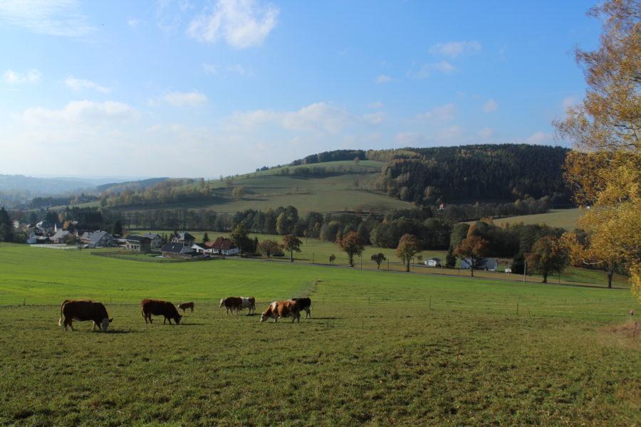 Kulturlandschaft im oberen Vogtland, Elstergebirge
