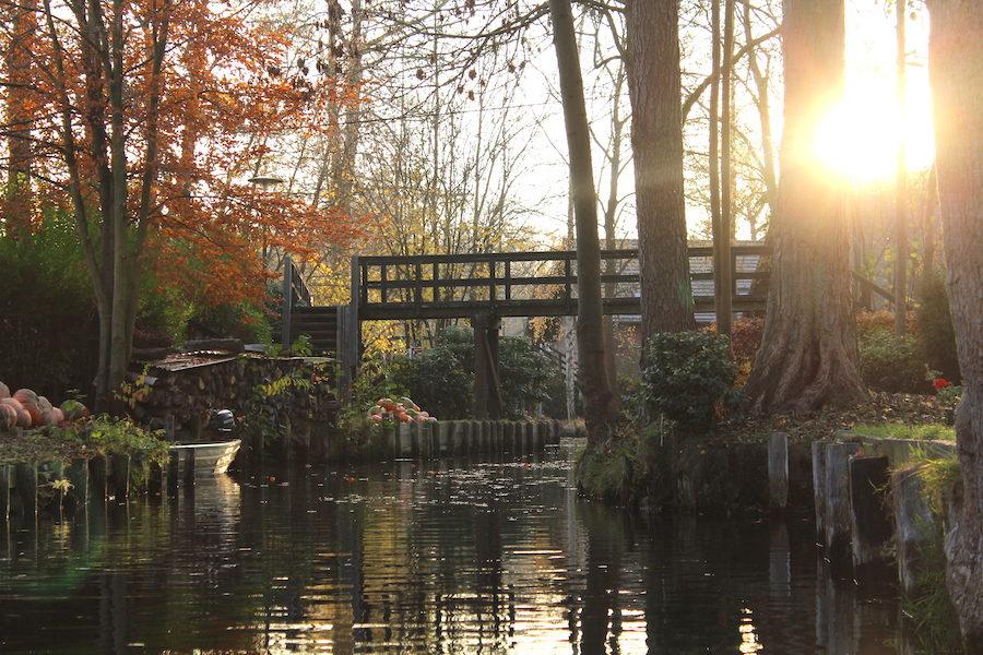 Eine Holzbrücke In Lehde, Spreewald