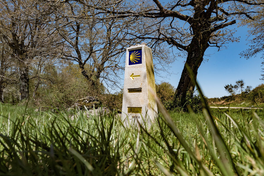 on the Camino trail, photo by Martin Mostert