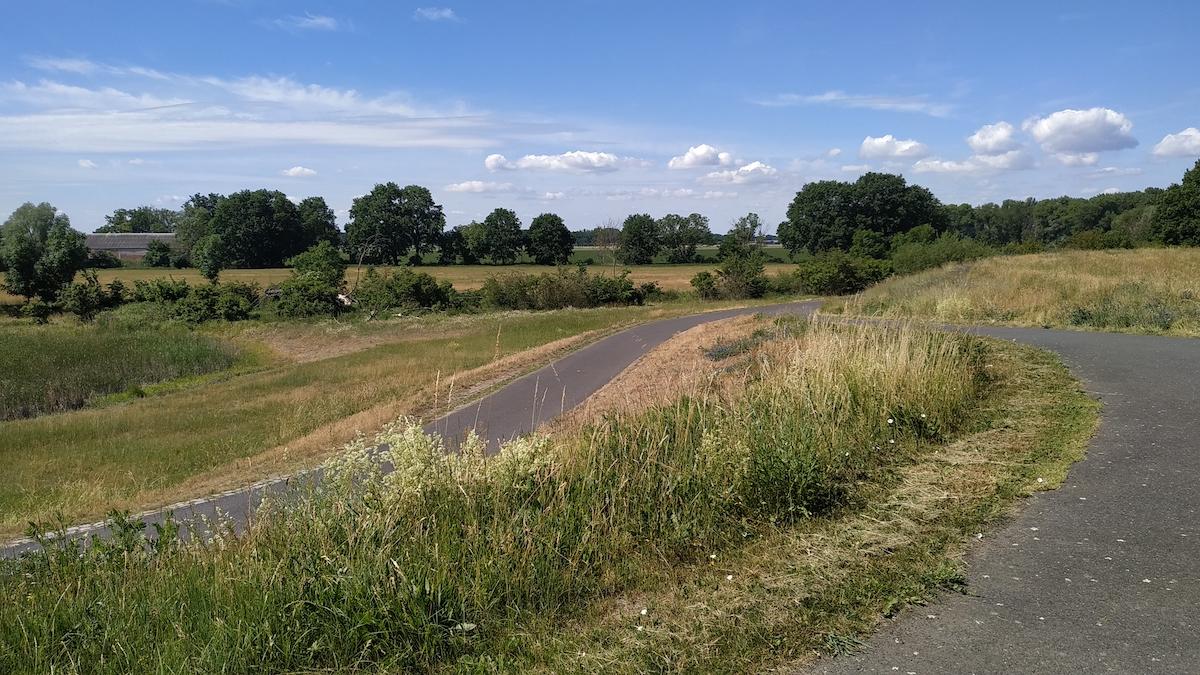 Oderbruchbahnradweg auf dem Oderdeich in Märkisch-Oderland