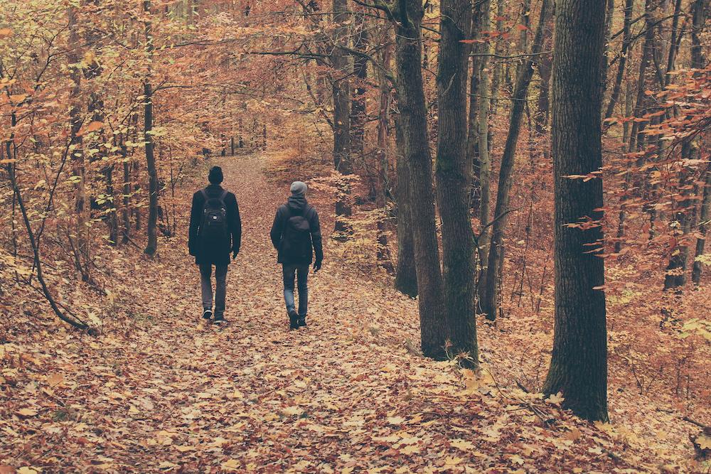 Herbst in Buckow