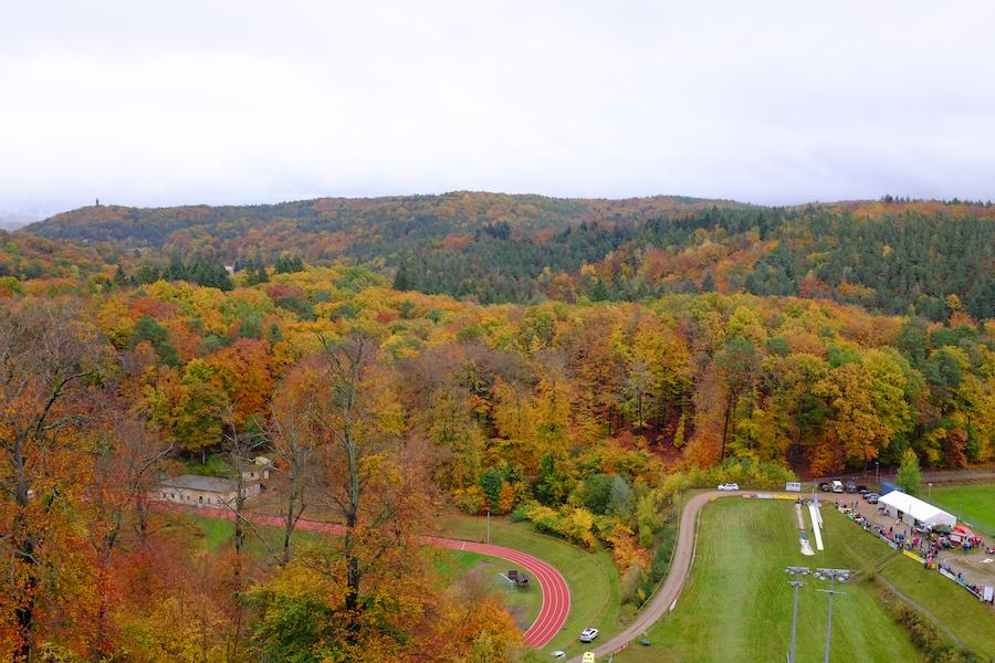 Blick vom Schanzenturm auf die bunten Wälder Bad Freienwaldes