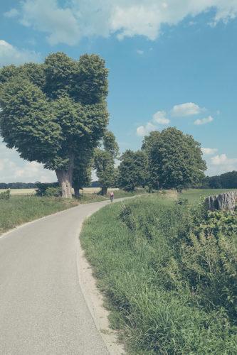 Berlin-Usedom-Radweg zwischen Parlow und Glambeck