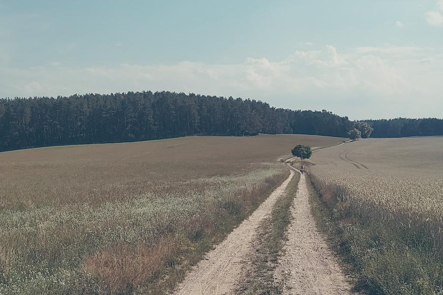 Ein Feldweg durch die Uckermark erspart uns viele Kilometer entlang des Berlin-Usedom-Radwegs