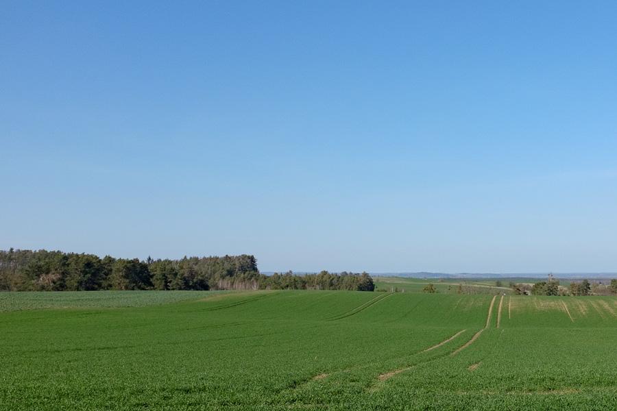 Weitsicht in Märkisch-Oderland