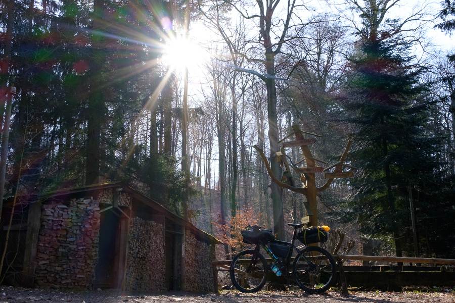 Sonnenschein am Baasee, Bad Freienwalde