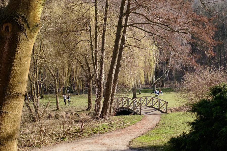 ein Kurpark der Stadt Freienwalde